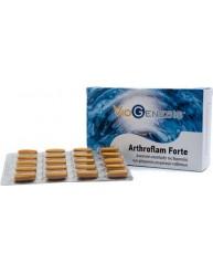 VIOGENESIS ARTHROFLAM FORTE 60 TABLETS